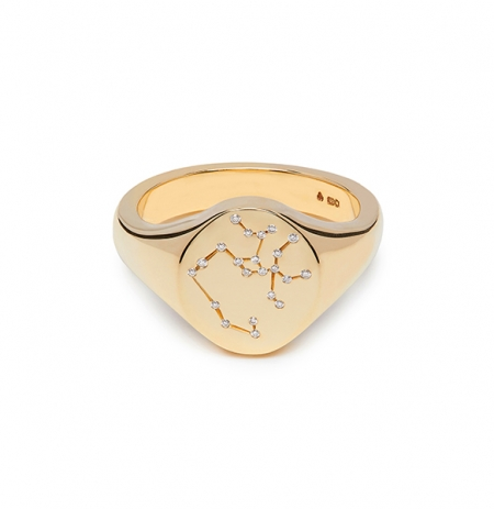 Constellation Signet Rings